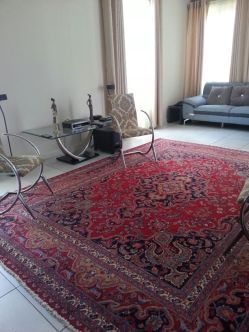 Hand Knotted Rug